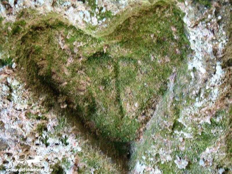 kalp işareti